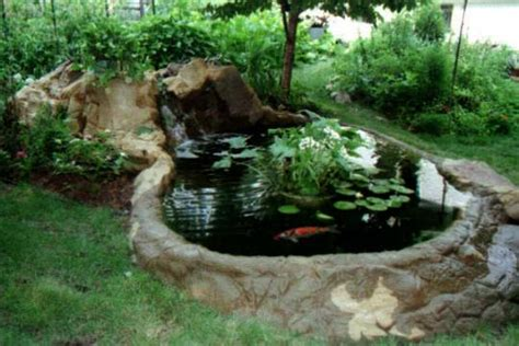 small backyard koi pond koi pond small