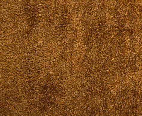 brown carpet carpet vidalondon