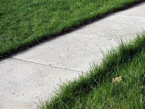 seattlescape 187 sidewalks