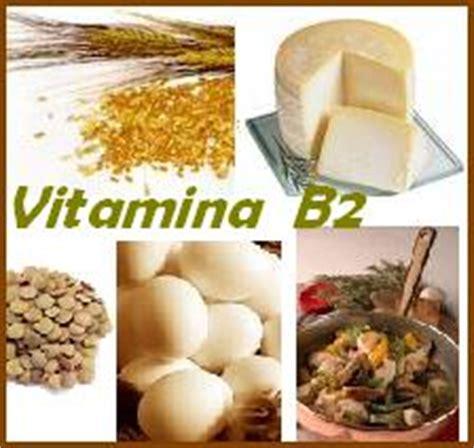 alimenti con vitamina b3 vitamina b2 riboflavina