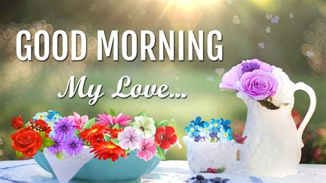 popular good morning  love pictures images  flowers funnyexpo