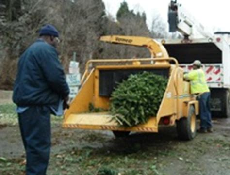 christmas tree recycling recycling