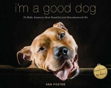 bad from history or misunderstood books ken foster s quot i m a quot explores pit bull myths and