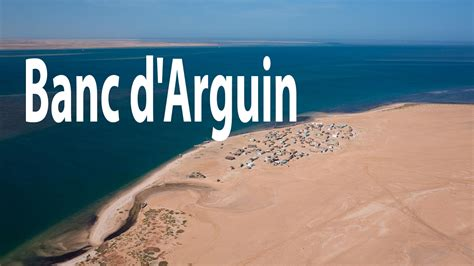 Banc D Arguin by Le Parc National Du Banc D Arguin Mauritanie Hd