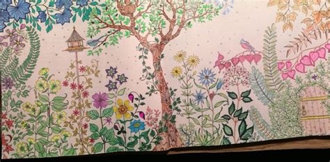 secret garden colouring book dublin my pages in quot secret garden quot book pgh coloring