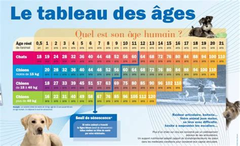 Calendrier Persan Calculer L 226 Ge Des Chiens Des Chats Animal Liberation