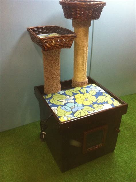 litter box in bedroom deluxe kitty cat all in oneheated cat bed litter box by stabob