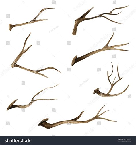bare branch tree watercolor brown tree branches bare tree twigs