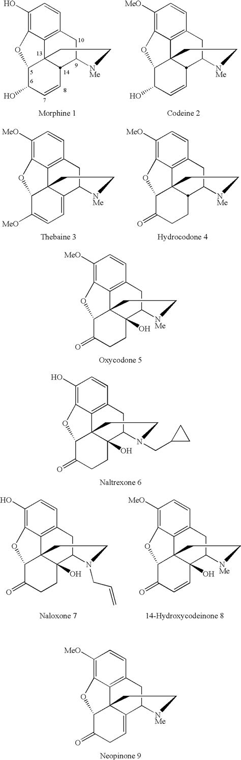Hydrocodone Sysnthesis by Patent Us7928234 Conversion Of Thebaine To Morphine
