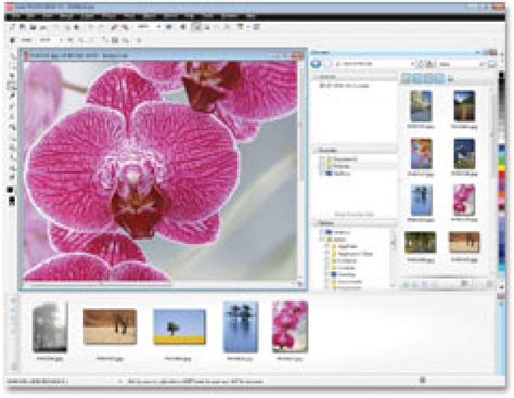corel draw x5 gratuit descargar flowcode 6 crack