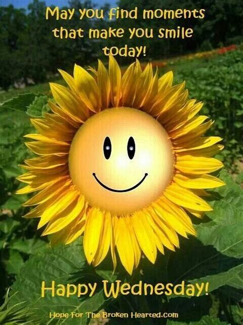 happy day photos morning happy wednesday quotes quotesgram