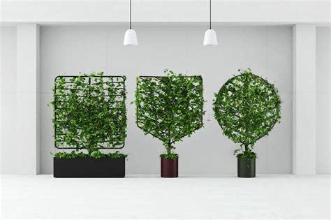 vasi piante botanical planter screens vasi per ricanti design