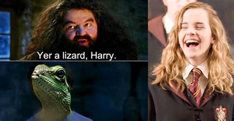 are you a wizard meme 15 hilarious quot you re a wizard harry quot memes that will make
