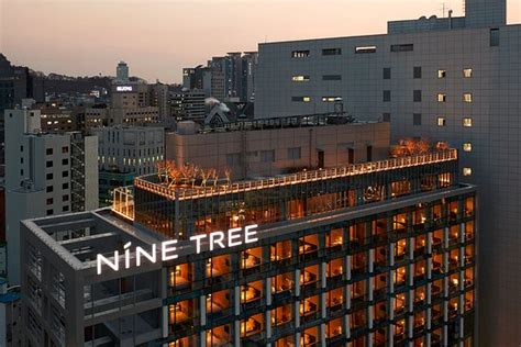 nine tree hotel myeong dong seoul south korea hotel nine tree premier hotel myeongdong ii updated 2017