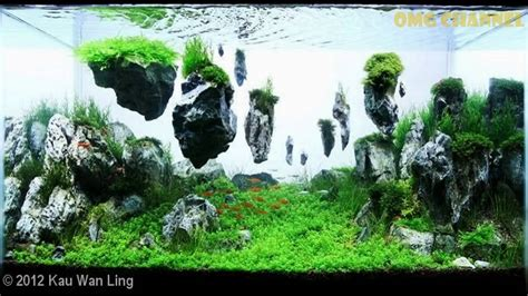 top 300 best aquascape aquariums youtube