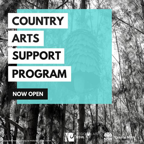 Applications For Programme Now Open by Applications Now Open For Country Arts Support Program