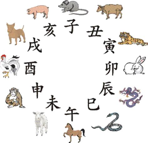 new year animal sequencing symbolik in china