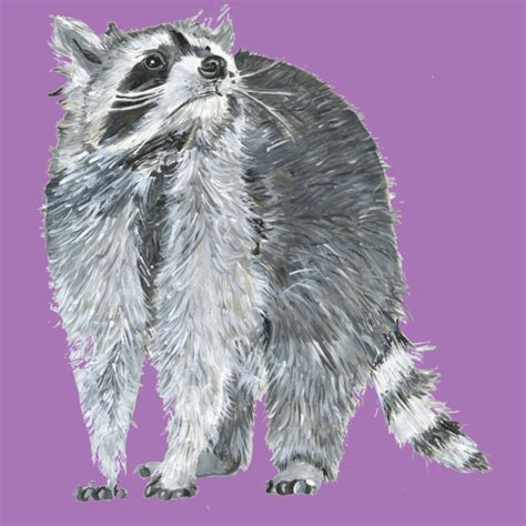 design by humans raccoon raccoon painting t shirt by shopbollocks design by humans