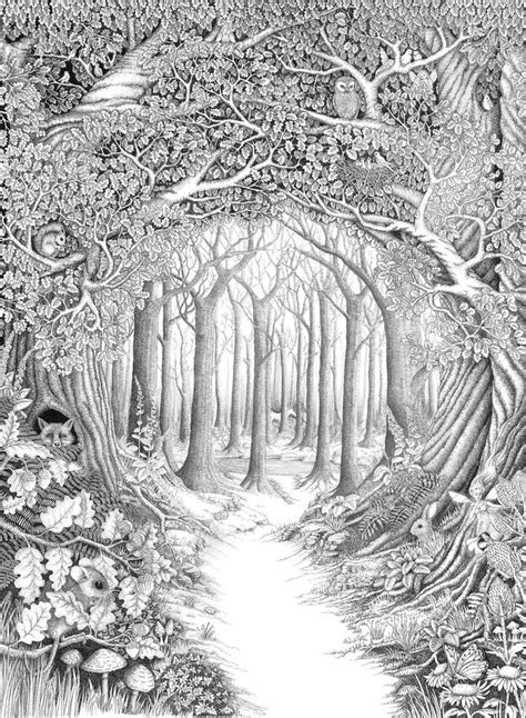 forest animals coloring pages for adults forest woods coloring page enchanted forest by ellfi on