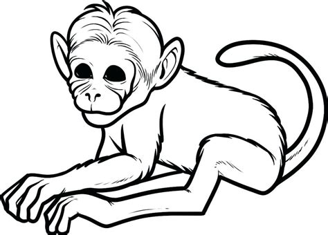 japanese macaque coloring page baby monkey with flower coloring page baby monkey
