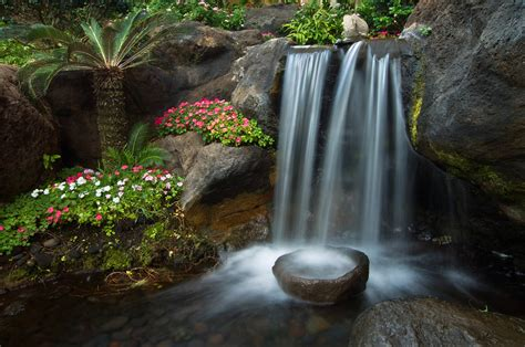 Zen Water Garden | zen gardens and the water dividing stone
