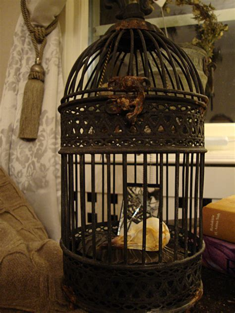 Gothic Victorian Home Decor | victorian gothic crow in cage goth home from sandrahila