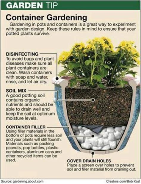 successful container gardening tips and 15 vegetables