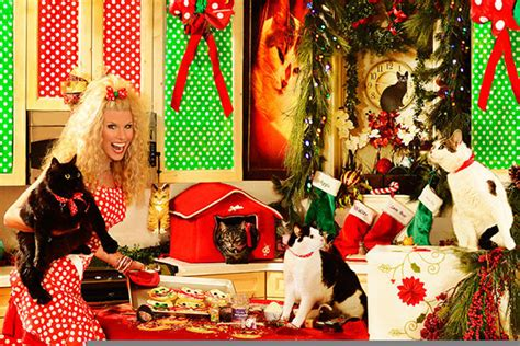 howard stern s 2012 christmas card is all about his cats