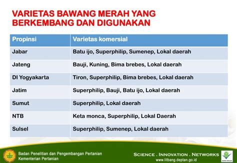 Benih Bawang Merah Varietas Thailand ppt p adu padan dan sinergi sistem perbenihan bawang