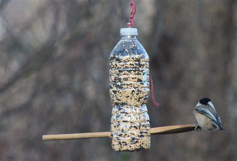 homemade bird feeders creative hints for attractive design