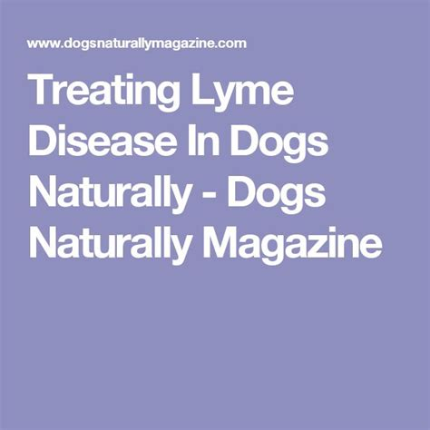 treatment for lyme disease in dogs 14 best images about dogs health on anxiety