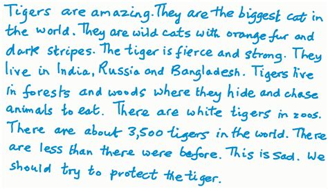 Essay on tiger for class 1