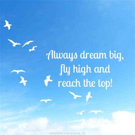 flying high living free chronicle of a sky diver books always big fly high and reach the top by