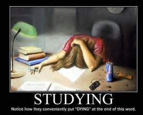 Study Memes - study tips from memes pondering the classroom