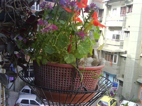 Garden Accessories India Gardening Pots India Home Outdoor Decoration
