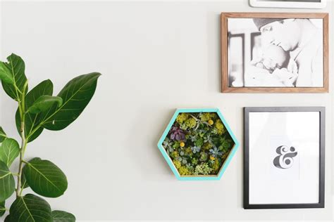 diy succulent planter diy succulent wall planter