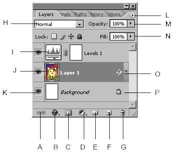 layout dasar dan penerapannya pdf tutorial photoshop dasar belajar layout tips dan trik