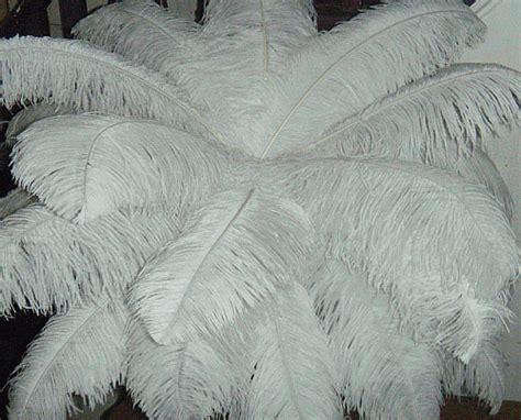 beautiful ostrich feather centerpiece kits best