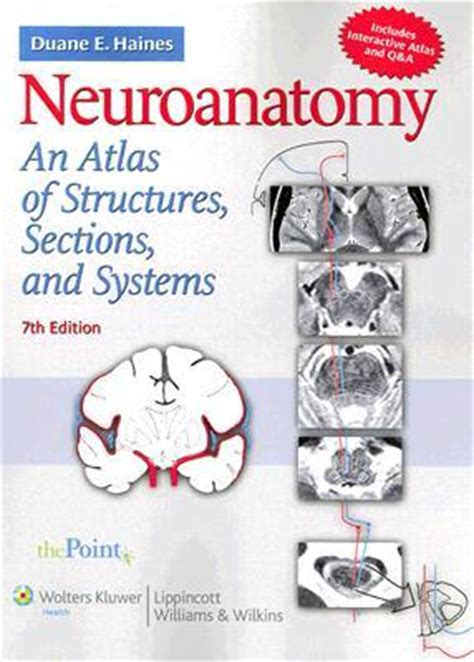 neuroanatomy an atlas of structures sections and