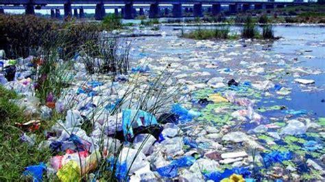 bacteria eat away global plastic problem environment news