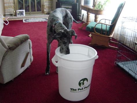 The Pet Pantry by The Pet Pantry Buffalo