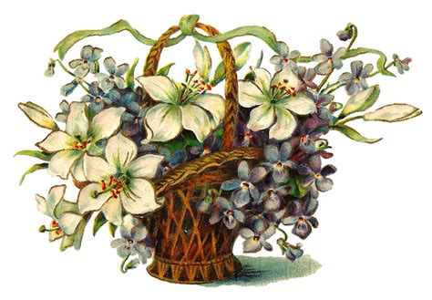 antique images wildflower image  flower basket