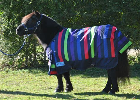 pony turnout rugs affordable shetland pony rugs turnout rugs fleece rugs stable rugs