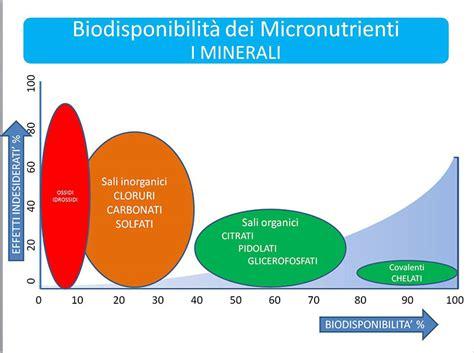 minerali alimenti tutto quello devi sapere sull assorbimento di vitamine