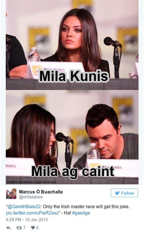 Garda Memes - 17 times irish people proved gaeilge is the funniest language