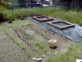 box gardens techno babble
