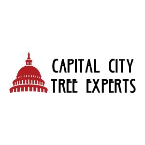pizza hut cottage grove wi capital city tree experts in wi whitepages