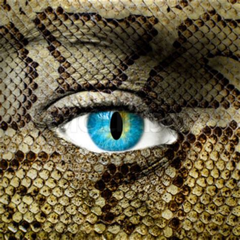 with snake scales stock image image of human design 31920181 human with snake skin texture stock photo colourbox
