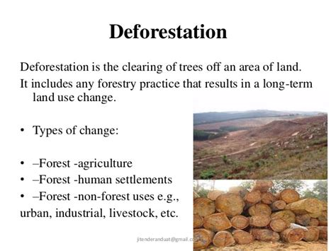 pattern of agriculture and types of forest in bangladesh global diversity patterns and loss of biodiversity