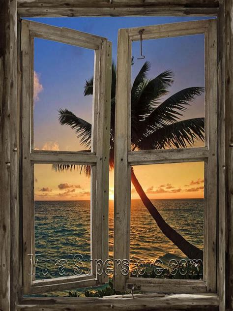 window  adhesive wall mural accent wall murals